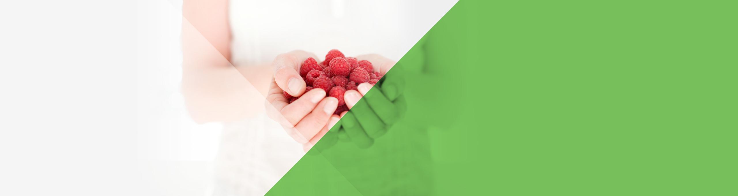 DrachQuadrat Ernährung